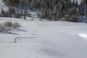 Ski Fouly0006